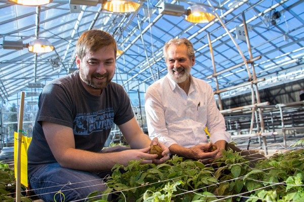 Photo of College of Agriculture and Life Sciences Outstanding Faculty Mentor Richard Veilleux with a student in a greenhouse